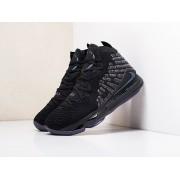 Кроссовки Nike Lebron XVII