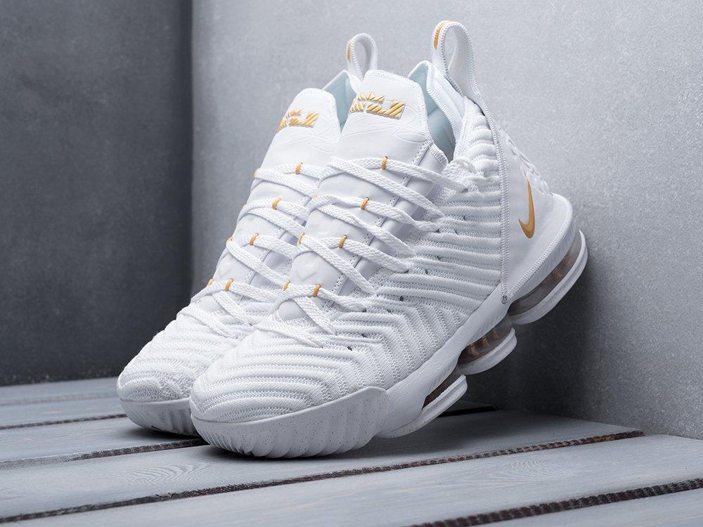 Кроссовки Nike Lebron XVI (12000)