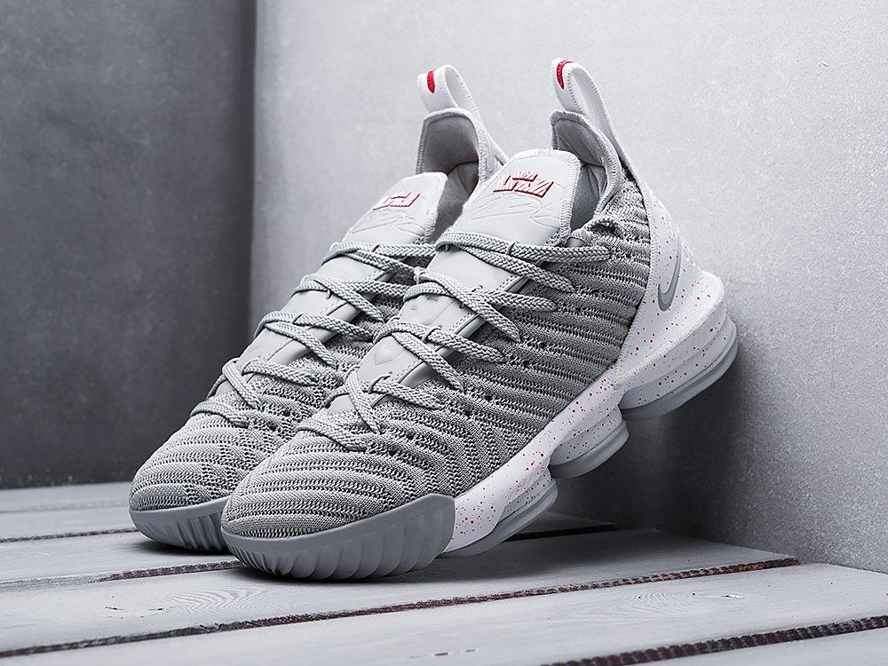 Кроссовки Nike Lebron XVI (12020)