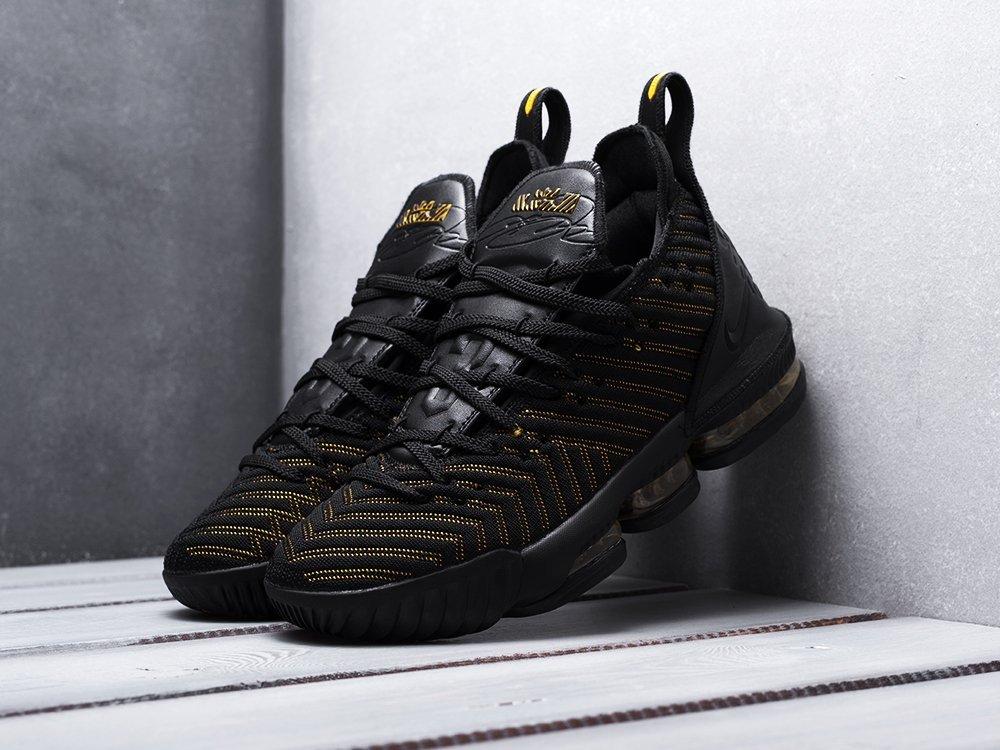 Кроссовки Nike Lebron XVI (13824)