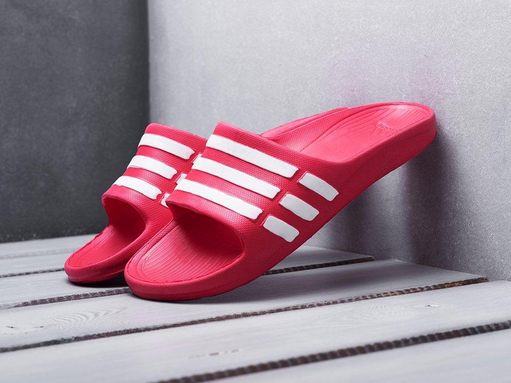 Сланцы Adidas (15401)