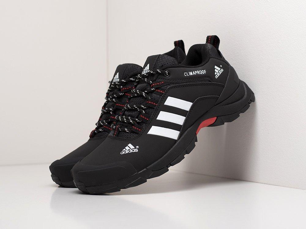 Кроссовки Adidas Terrex (17100)