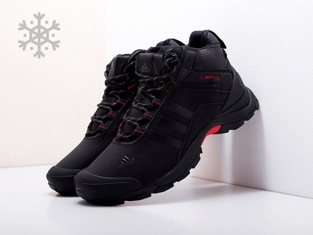 Ботинки Adidas Terrex Winter (17109)