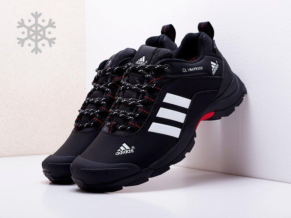 Кроссовки Adidas Terrex AX2 (17135)