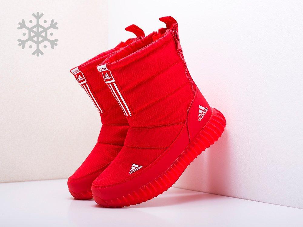 Сапоги Adidas (17774)
