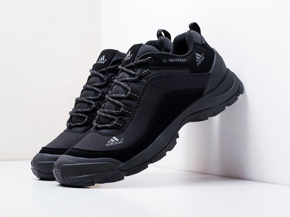 Кроссовки Adidas Terrex (18229)