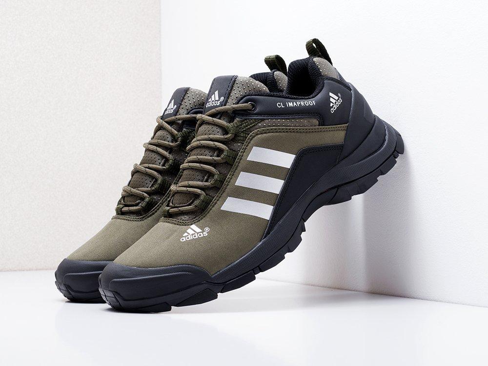 Кроссовки Adidas Terrex (18235)