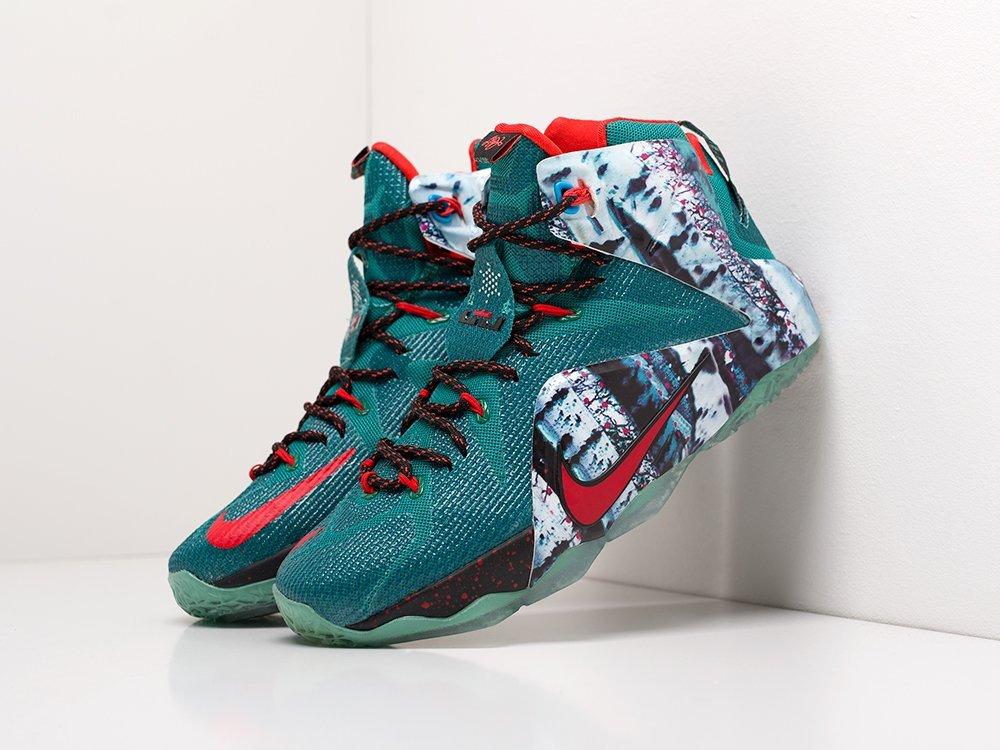Кроссовки Nike Lebron 12 (19998)