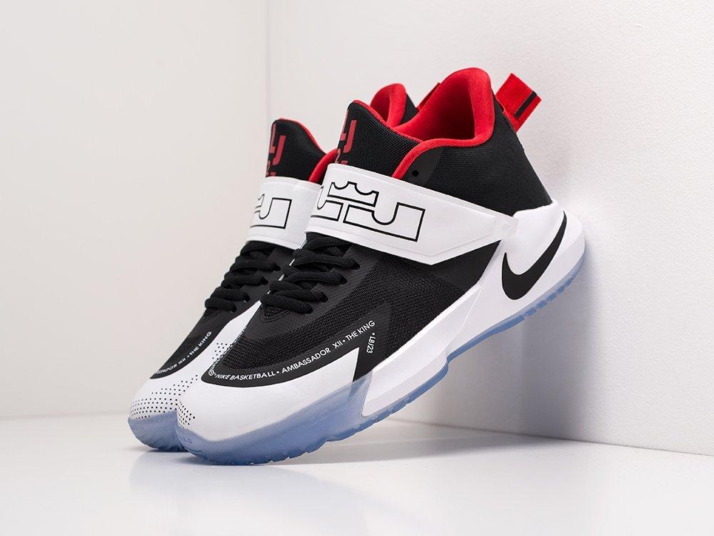 Кроссовки Nike LeBron Ambassador 12 (20051)