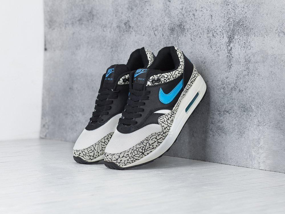 Кроссовки Nike Air Max 1 (284)