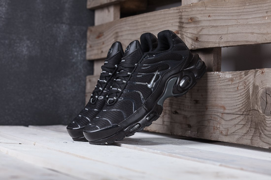 Кроссовки Nike Air Max Plus / 5111