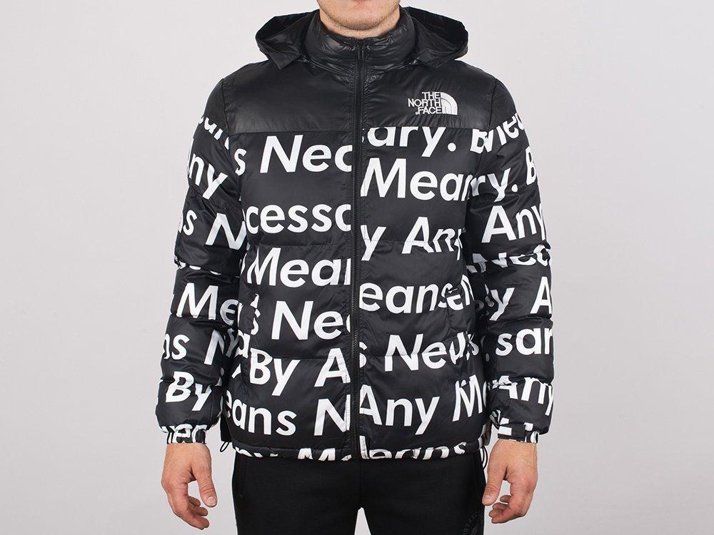Куртка зимняя The North Face (8495)