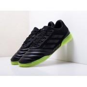Футбольная обувь Adidas Copa 19.3 IN
