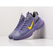 Кроссовки Nike LeBron Ambassador 13